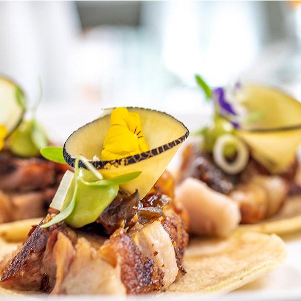 Gorumet Dining Blanca Blue Restaurant in Los Cabos