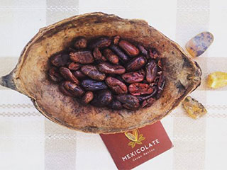 Mexicolate - Organic chocolate products